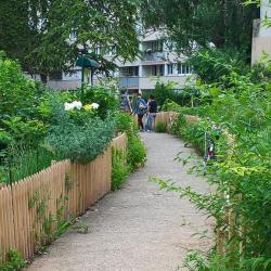 Partez à la découverte des jardins partagés de Paris !