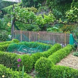 Ca vous donne pas envie de jardiner ?