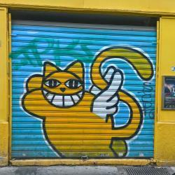 Monsieur Le Chat fait partie des pensionnaires de l'EchoMusée