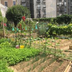 Incroyable de trouver ce jardin dans Paris !