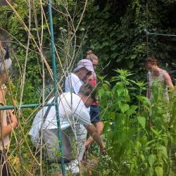 Explication passionnée d'un bénévole du jardin partagé