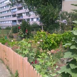 Super potager au coeur de Paris