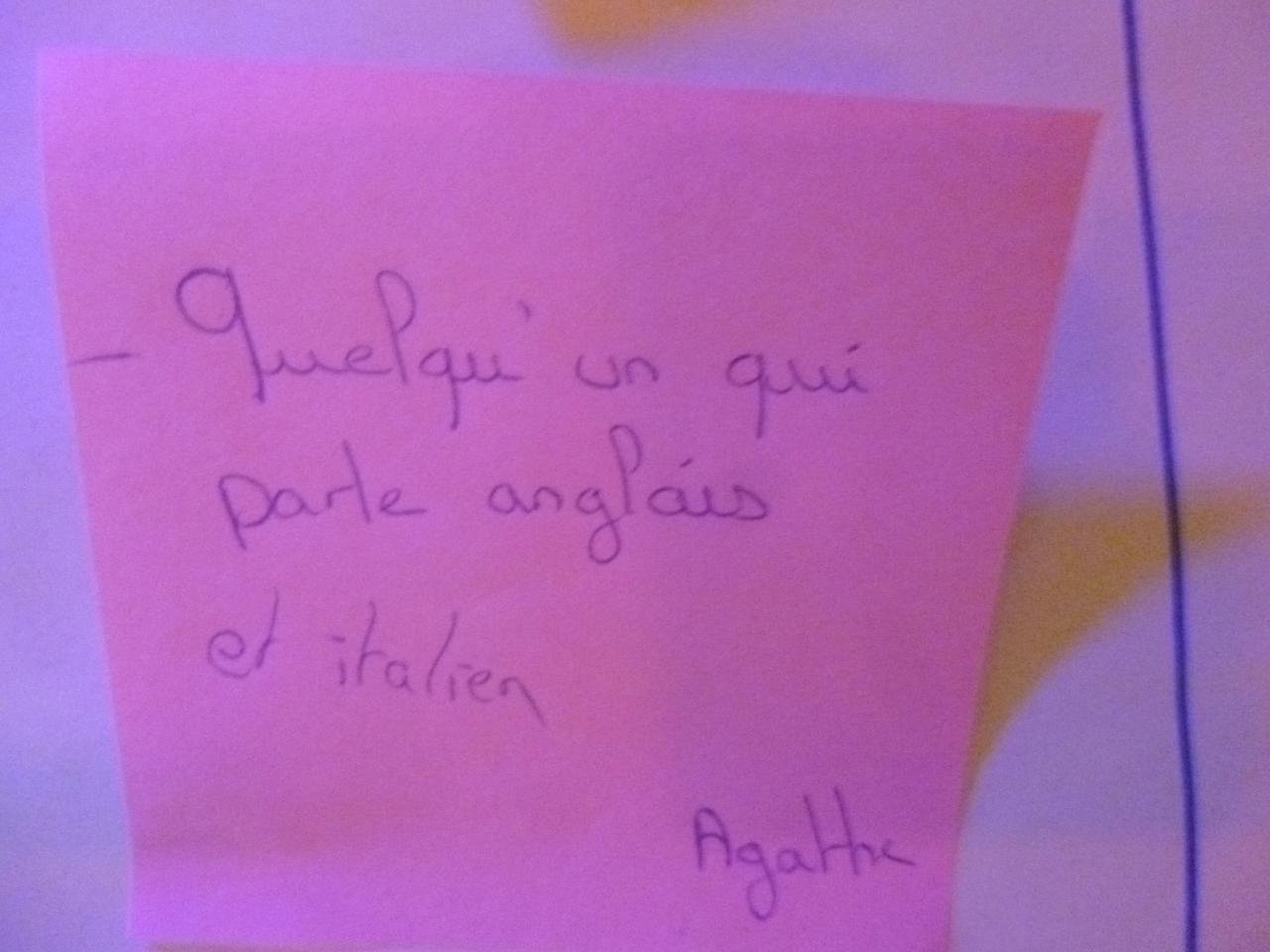On recherche un polyglotte