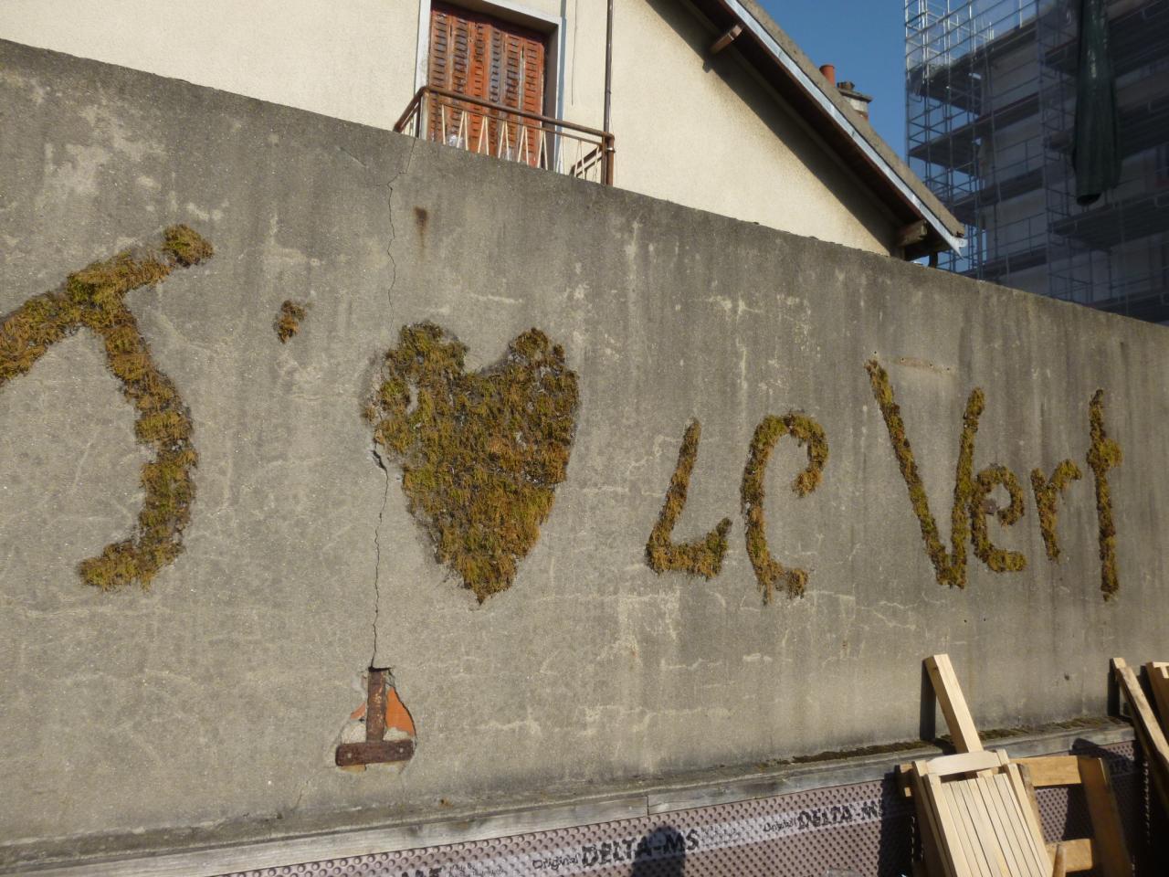 Graffiti végétal avec l'association J'aime le Vert