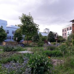 Magnifique le jardin Herold à cette époque !