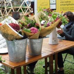 Discussion avec Hortense de Fleurs d'Ici !