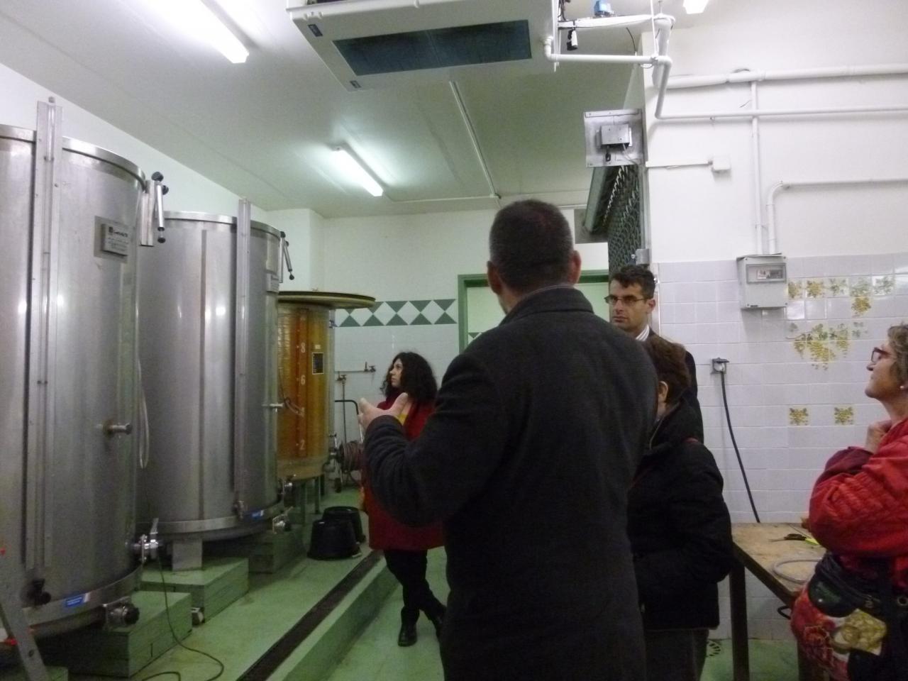 Explication sur la fermentation du vin